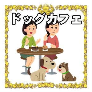 お店の紹介:ドッグカフェ